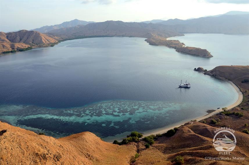 Indo Agressor - Liveaboard Indonesia (7)