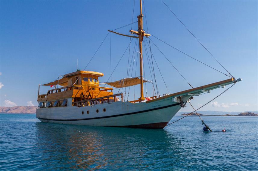 Kelana Liveaboard Boat Indonesia - Liveaboard Indonesia (22)