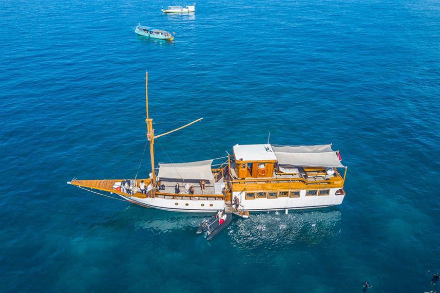 Kelana Liveaboard Boat Indonesia - Liveaboard Indonesia (3)