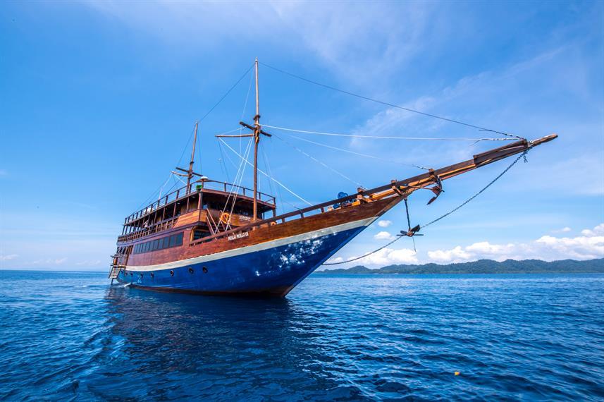 Mola Mola - Liveaboard Indonesia (18)
