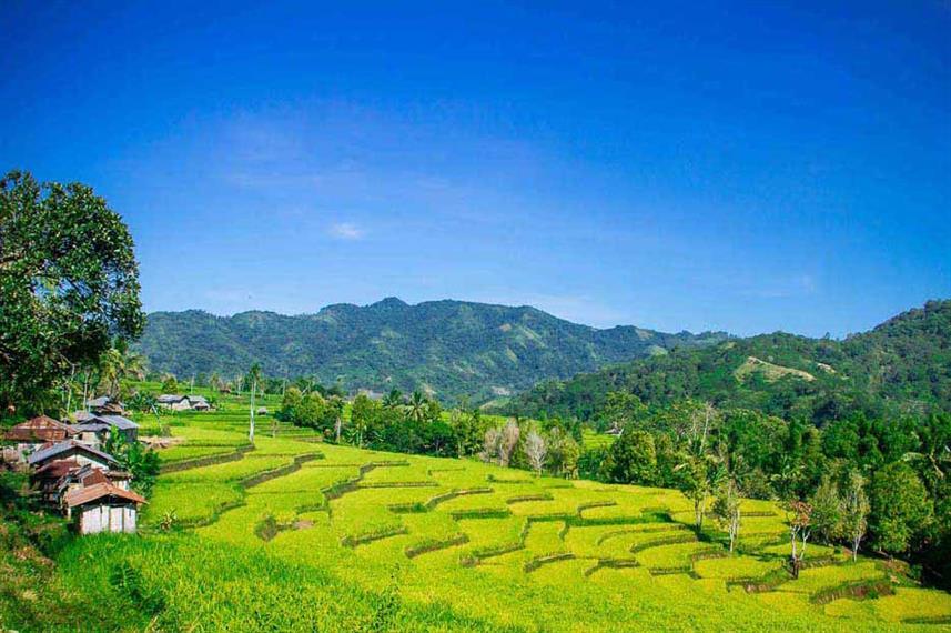 Ombak Putih - Liveabaord Indonesia (16)