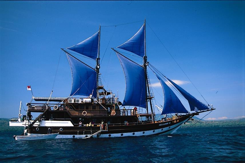 Sea Safari VI - Liveaboard Indonesia (16)