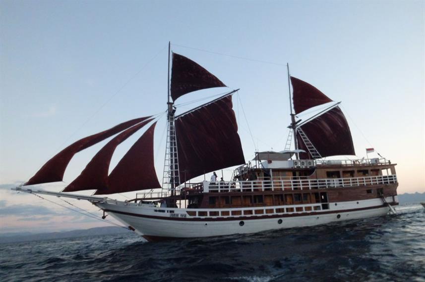 Seamore Papua - Liveaboard Indonesia (11)