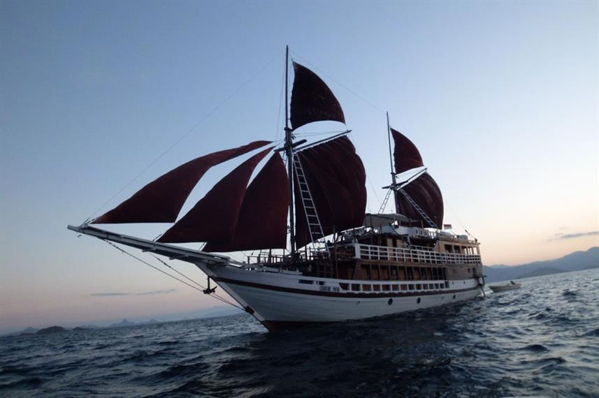 Seamore Papua - Liveaboard Indonesia (13)
