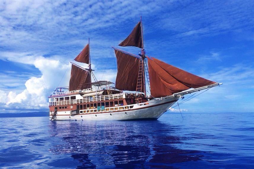 Seamore Papua - Liveaboard Indonesia (17)