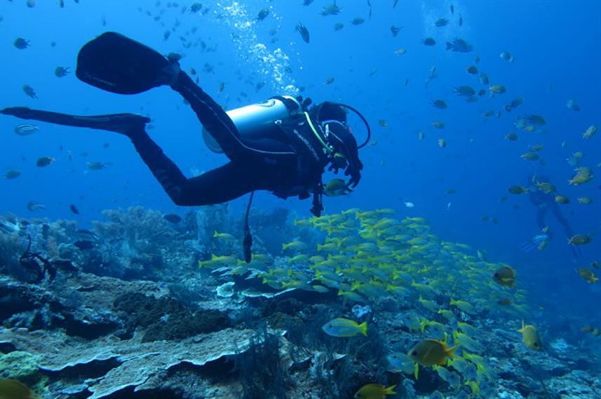 Tiger Blue - Liveaboard Indonesia (26)