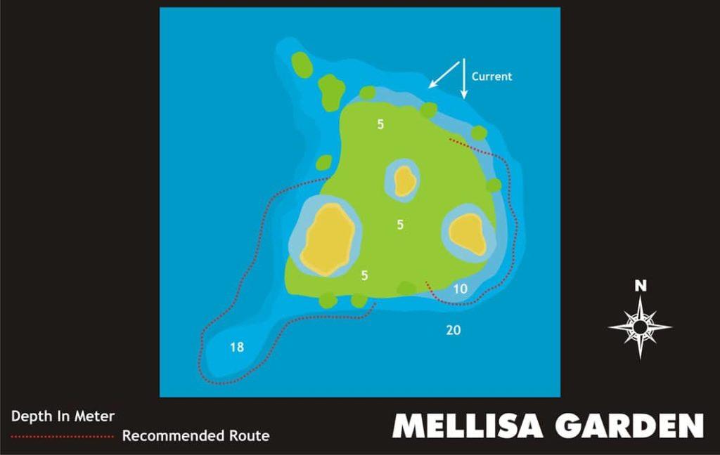 Mellisa-Garden-Liveaboard-Indonesia